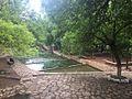 Ifrane's garden.jpg