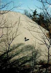 Sand dune on Lake Michigan at Indiana Dunes National Lakeshore