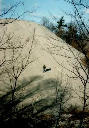 Lake Michigan - Sand dune on Lake Michigan at Indiana Dunes National Lakeshore