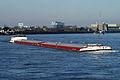 Innovation (ship, 2007) 002.JPG