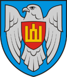 Insignia of the Lithuanian Air Force.png