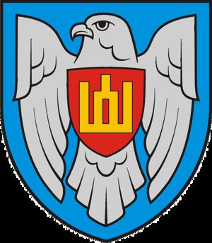 Lithuanian Air Force - Lithuanian Air Force emblem