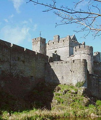 Cahir Castle in Ireland was besieged and captured three times: in 1599 by the Earl of Essex, in 1647 by Lord Inchiquin, and in 1650 by Oliver Cromwell. Ireland-Cahir Castle.jpg