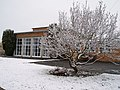 January Snow at Langmoor Primary School - geograph.org.uk - 155237.jpg