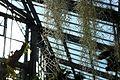 Jardin Botanique Green house.jpg