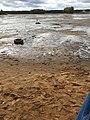 Jezioro w Sielpii Wielkiej.jpg