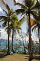 Jinek Bay, Lifou, New Caledonia, 2007 (3).JPG