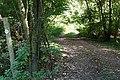Junction in Lye Wood - geograph.org.uk - 987462.jpg