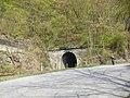 Křivoklát, železniční tunel.jpg