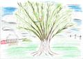 KIP Baum Beispielbild.png