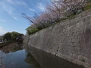 Kagoshima castle1.JPG