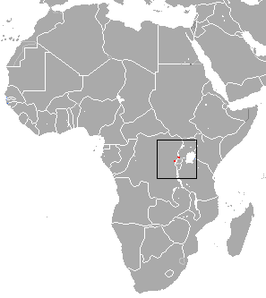Kahuzi Swamp Shrew area.png