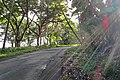 Kalapana-Kapoho Rd, Opihikao, Pahoa (504093) (22596839601).jpg