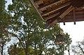 Kaminuma Park(Upper-Marsh Park) - 上沼公園 - panoramio (3).jpg