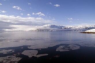 Kangilinnguit - Fjord icefloes, view from Kangilinnguit
