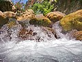 Karabungar deresi - panoramio (4).jpg