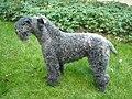 Kerry blue terrier 062009.JPG