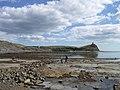 Kimmeridge Ledges - geograph.org.uk - 378983.jpg