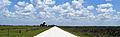 Kissimmee Prairie Preserve State Park Florida - Peavine Road.jpg