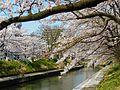 Kitashinmachi, Toyama, Toyama Prefecture 930-0023, Japan - panoramio (1).jpg