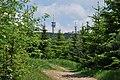 Klínovec - panoramio.jpg
