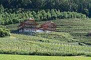 Klagenfurt Woelfnitz Leiten 6 Weingut Karnburg 28052015 0966.jpg