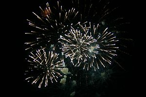 Fireworks in Cameron Park, California on June 27, 2009