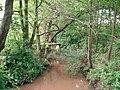 Knutsford-Mobberley - Birkin Brook - geograph.org.uk - 255535.jpg