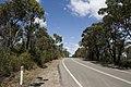Ku-Ring-Gai Chase NSW 2084, Australia - panoramio (13).jpg
