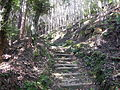 Kumano Kodo Dainichigoe World heritage42.JPG