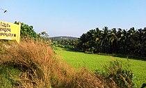 Kuttippuram, Kerala,India.jpg