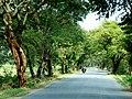 Kyaukse, Myanmar (Burma) - panoramio (15).jpg