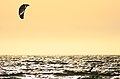 Kyte surf (3771100857).jpg