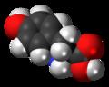 L-Tyrosine-3D-spacefill.png