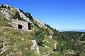 La Dôle - panoramio (31).jpg