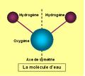 La molécule d'eau.PNG