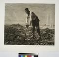 Labor (ou Le paysan à la houe), d'après Millet (NYPL b14693583-1153441).tiff
