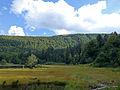 Lac de Blanchemer-Tourbière (1).jpg
