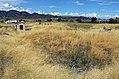 Lamb Spring Site.JPG