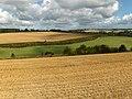 Lambourn valley farmland - geograph.org.uk - 230029.jpg