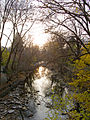 Late Afternoon on Mimico Creek.jpg