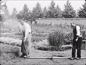 File:Le Jardinier (l'Arroseur arrosé) (1895).webm