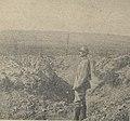 Le ravin de la Mort entre Esnes et la cote 304 (août 1917).jpg