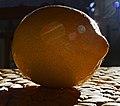 Lemon (26261277428).jpg