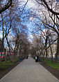 Lenina street boulevard yekaterinburg.jpg