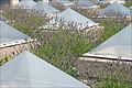 Les terrasses de la villa Arson (Nice) (5954759642).jpg