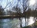 Lištica river04363.JPG