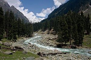 Lidder River - Lidder River near Lidderwat