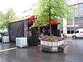 Life-Musik im Regen - geo.hlipp.de - 10336.jpg