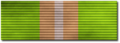Life Ribbon.png